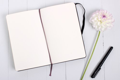 50 engaging diary photos