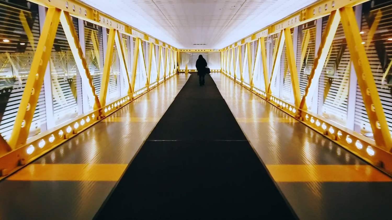 1000+ 黃色 影片 Pexels · 免費圖庫影片