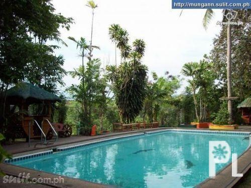 Swimming Pool For Rent  Party Venue In Fairview ? Quezon