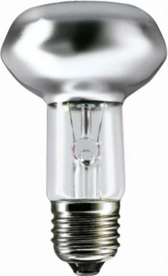 Frosted Light Bulb