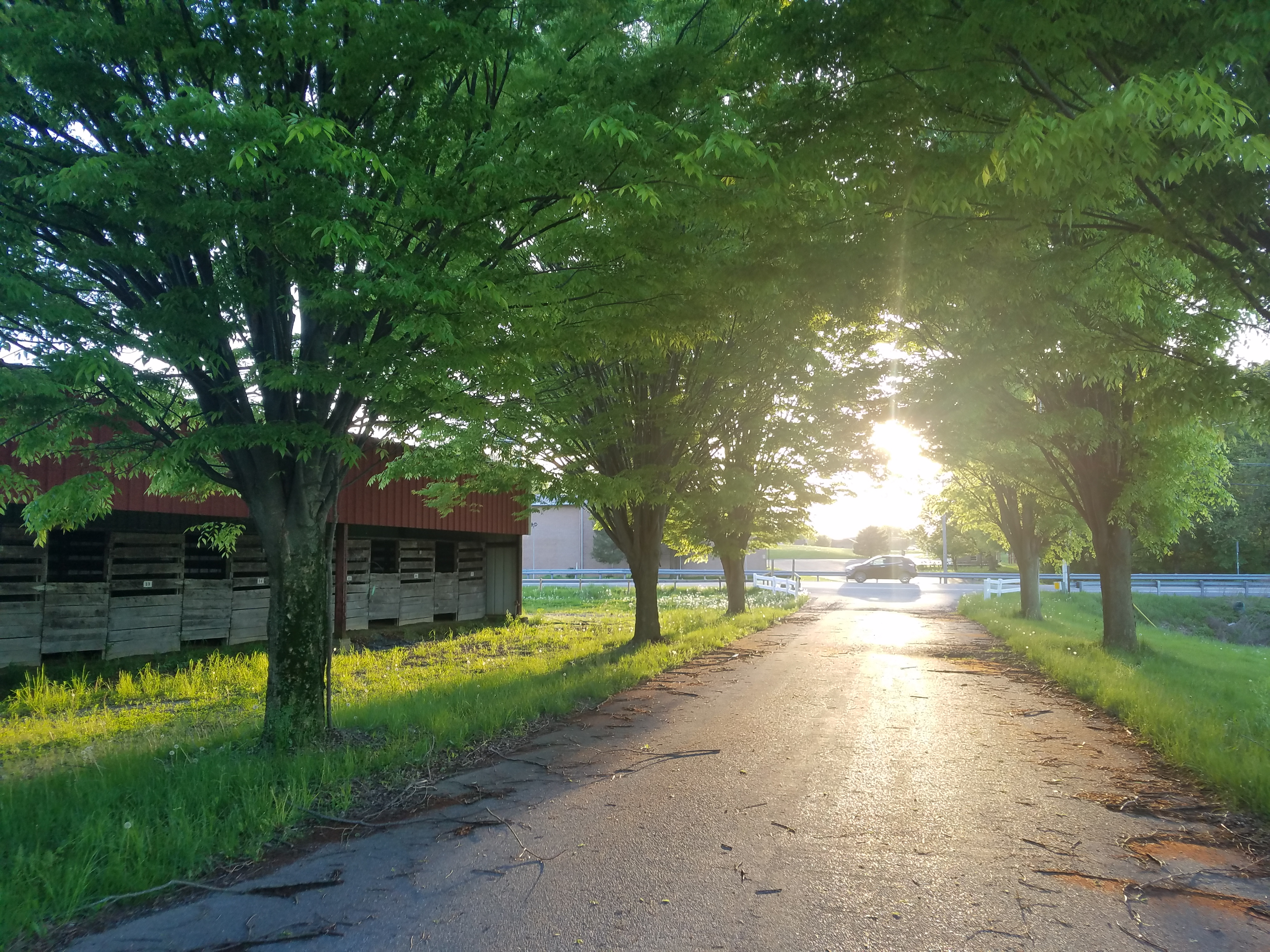 What to do and where to go to avoid the heat this weekend in Lebanon County