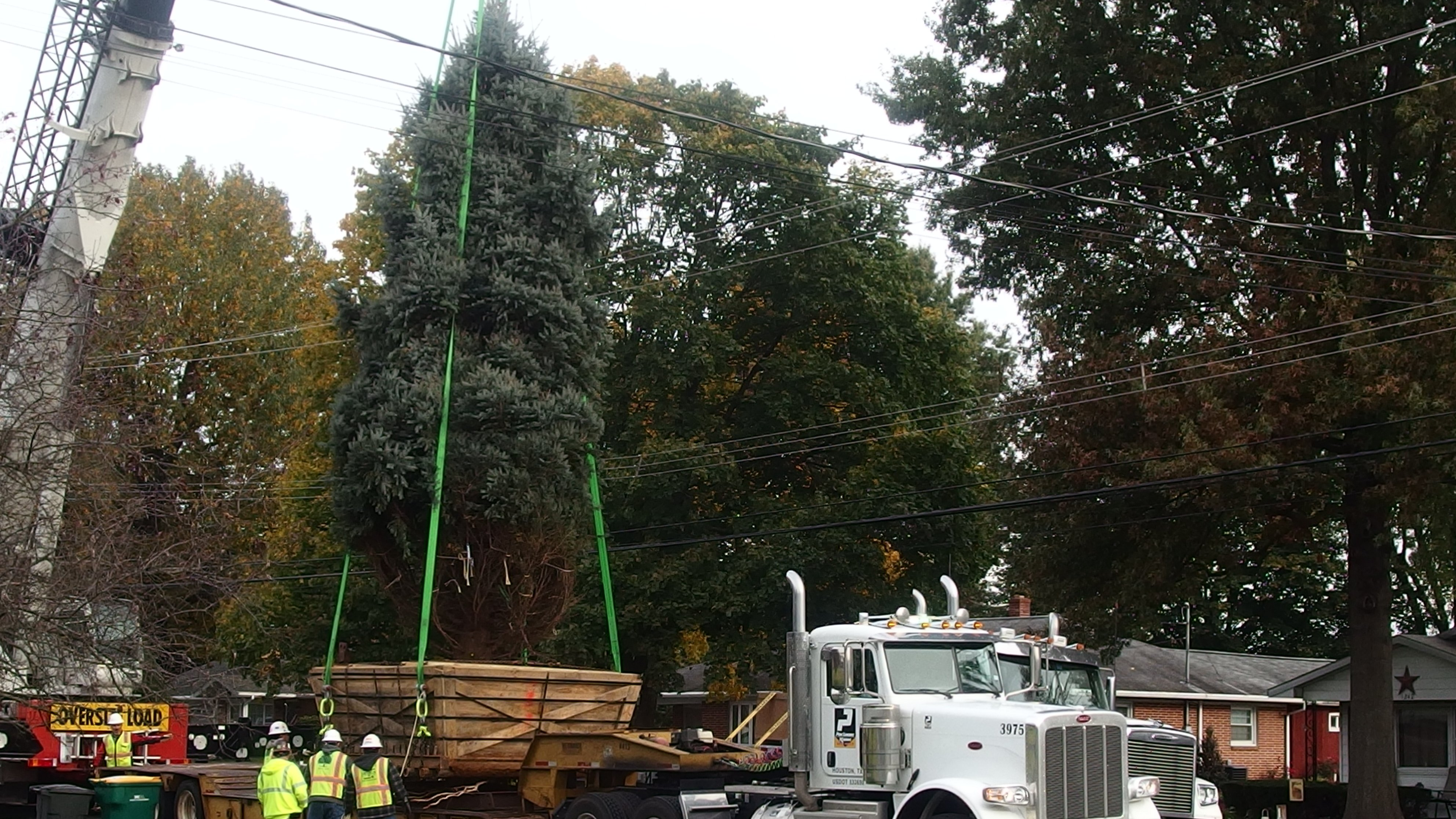 National Christmas Tree mystery solved, Palmyra donors' tree headed to D.C.