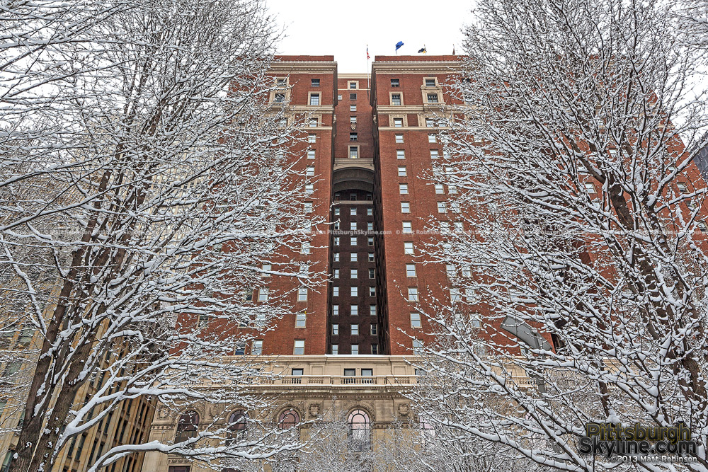 Snowfall on trees with Pittsburgh's Omni William Penn Hotel