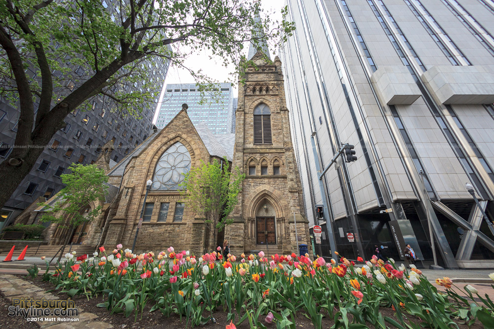 Tulips along Grant Street with the First Lutheran Church