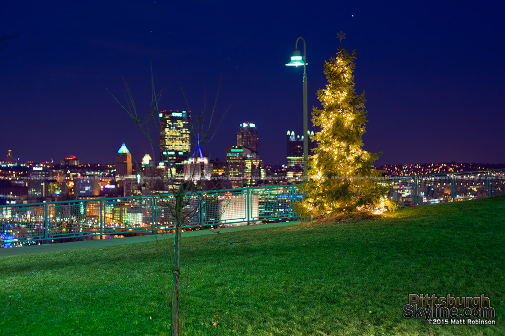 Lone Christmas tree at night with the Pittsburgh Skyline