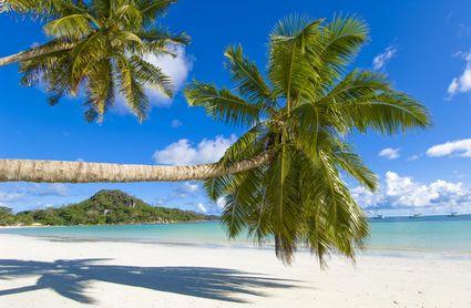 Foto Paesaggio tropicale a Praslin  425x278  Autore
