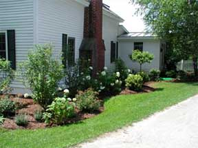 foundation planting and home landscaping