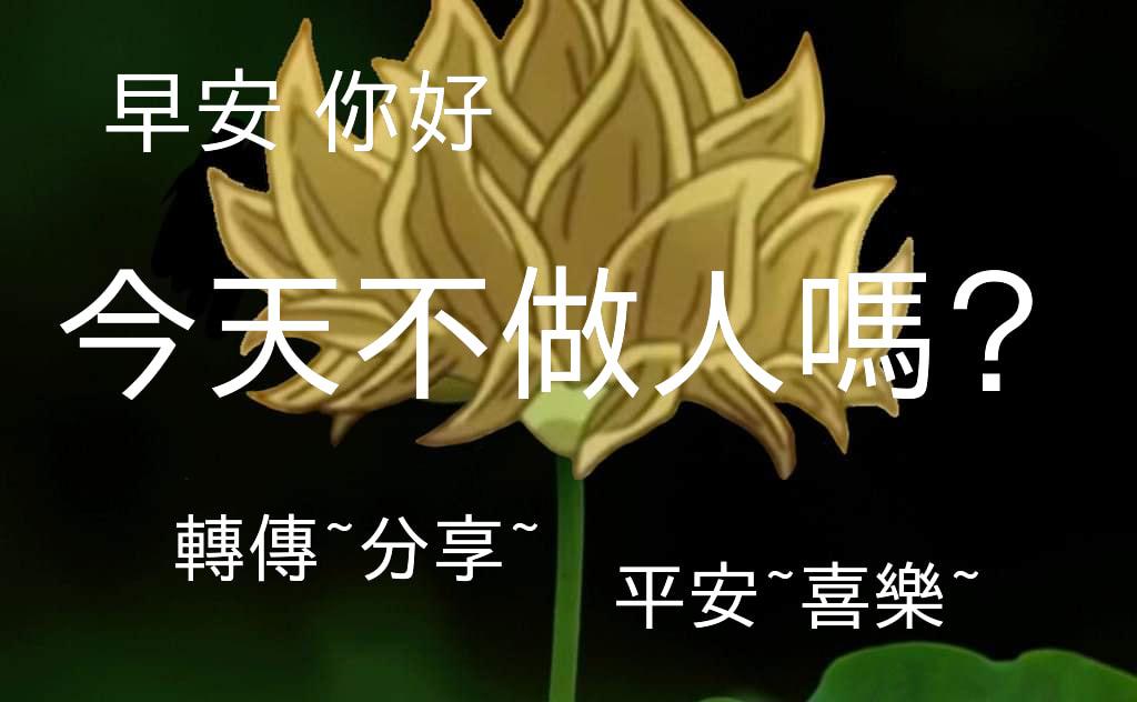 ♻肉肉丸  </p> </div><!-- .center-block .entry-content --> </article><!-- #post-## -->  <nav class=