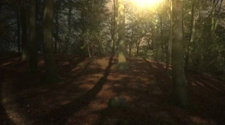 Fantasy Forest Stock Footage ~ Royalty Free Stock Videos Page 5
