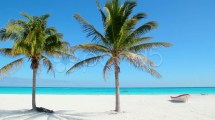 Caribbean Tulum White Sand Beach With Two Palm Trees And