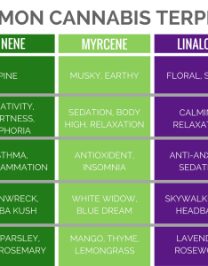 Chart of terpenes also cannabis concentrates guide potguide rh
