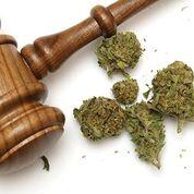 Legal risks of marijuana.