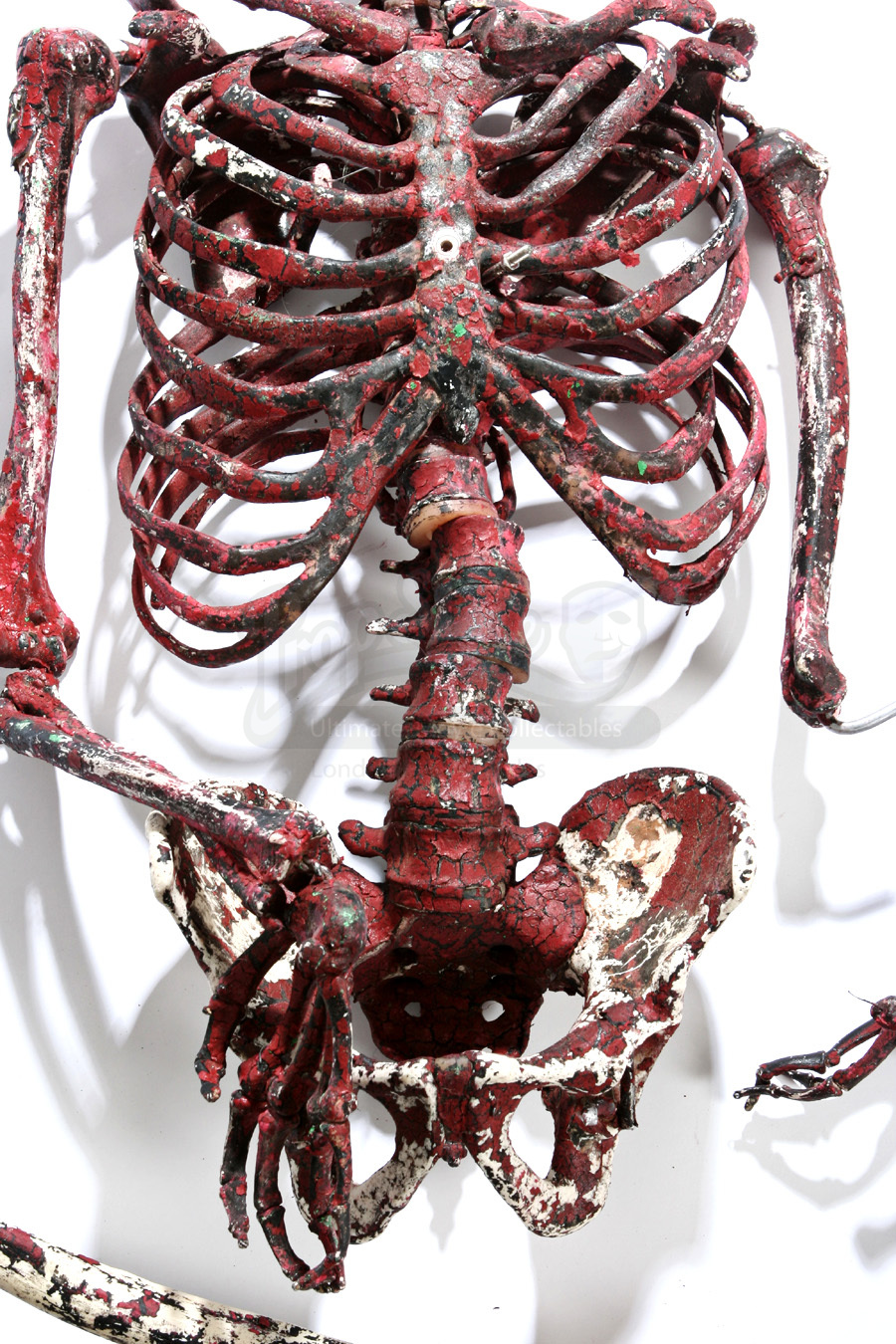 Incinerated Red Human Skeleton  Prop Store  Ultimate