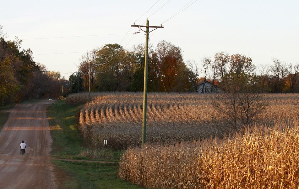 Fall in Minnesota.