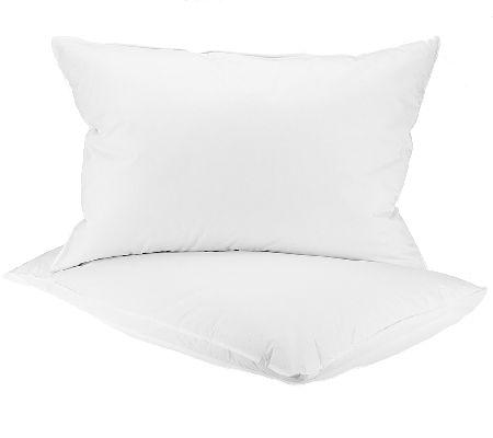 Northern Nights Circle of Down Set of 2 Pillows  H202430