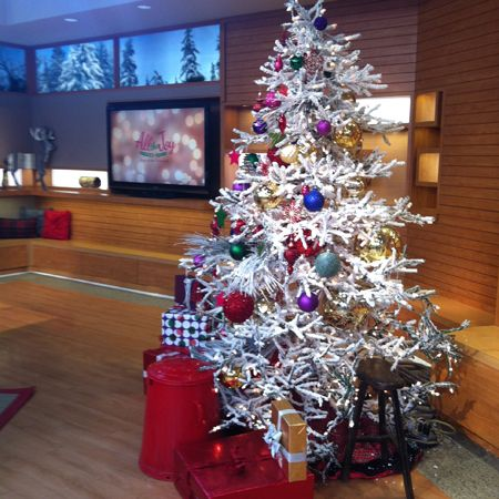 Christmas Decorating with the Q! Blogs Forums