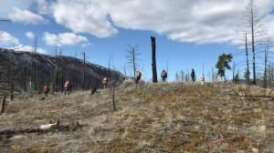 Un feu de forêt aide une Première Nation de la C.-B. à retracer son histoire
