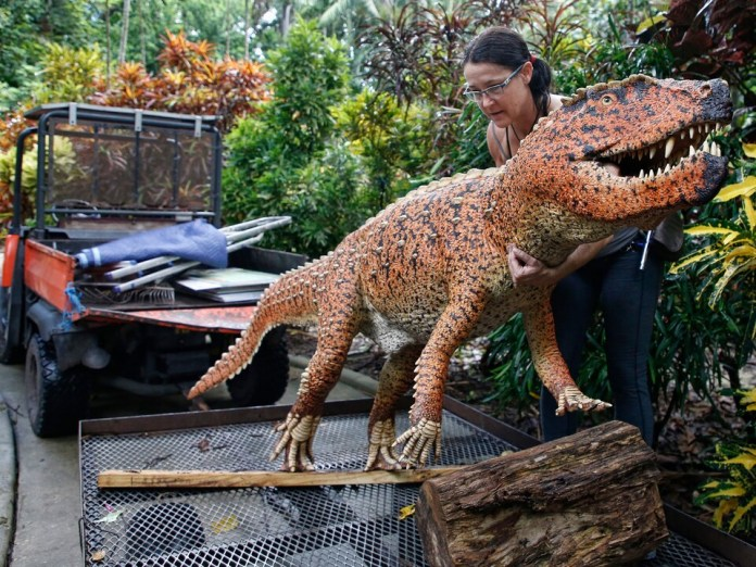 A woman lays a large plastic dinosaur on a metal cart.
