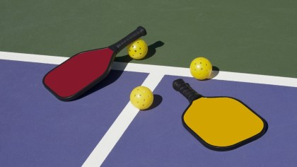 Discovering pickleball