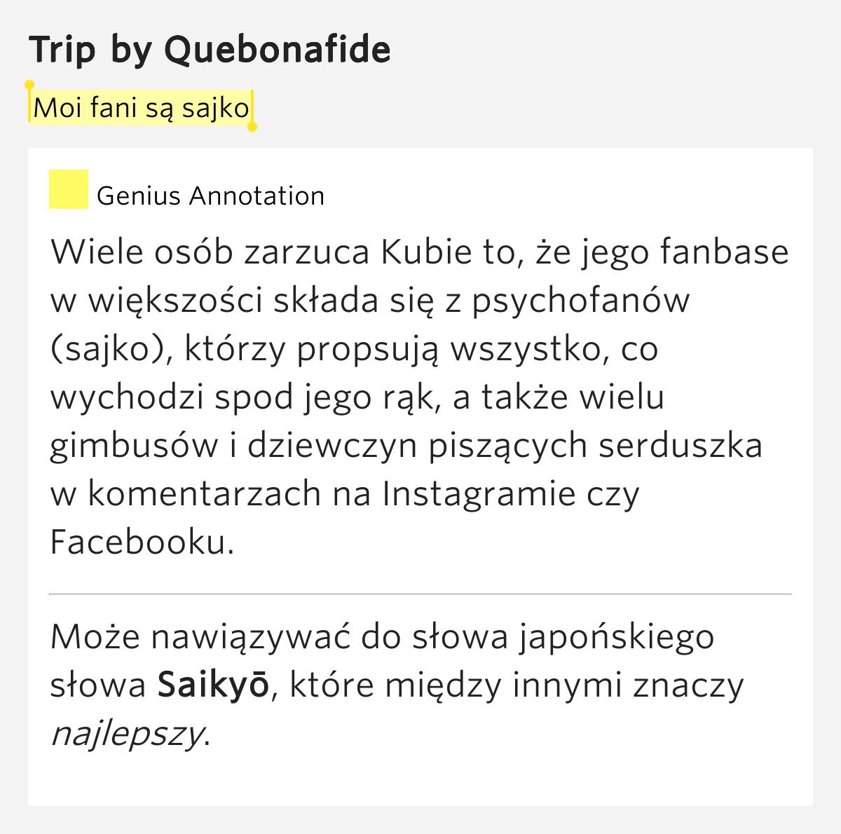 Moi fani są sajko – Trip Lyrics Meaning