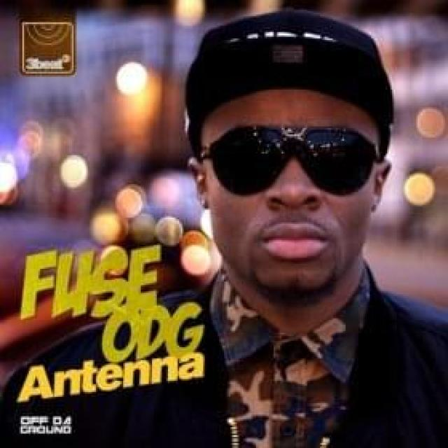 Fuse ODG Antenna cover