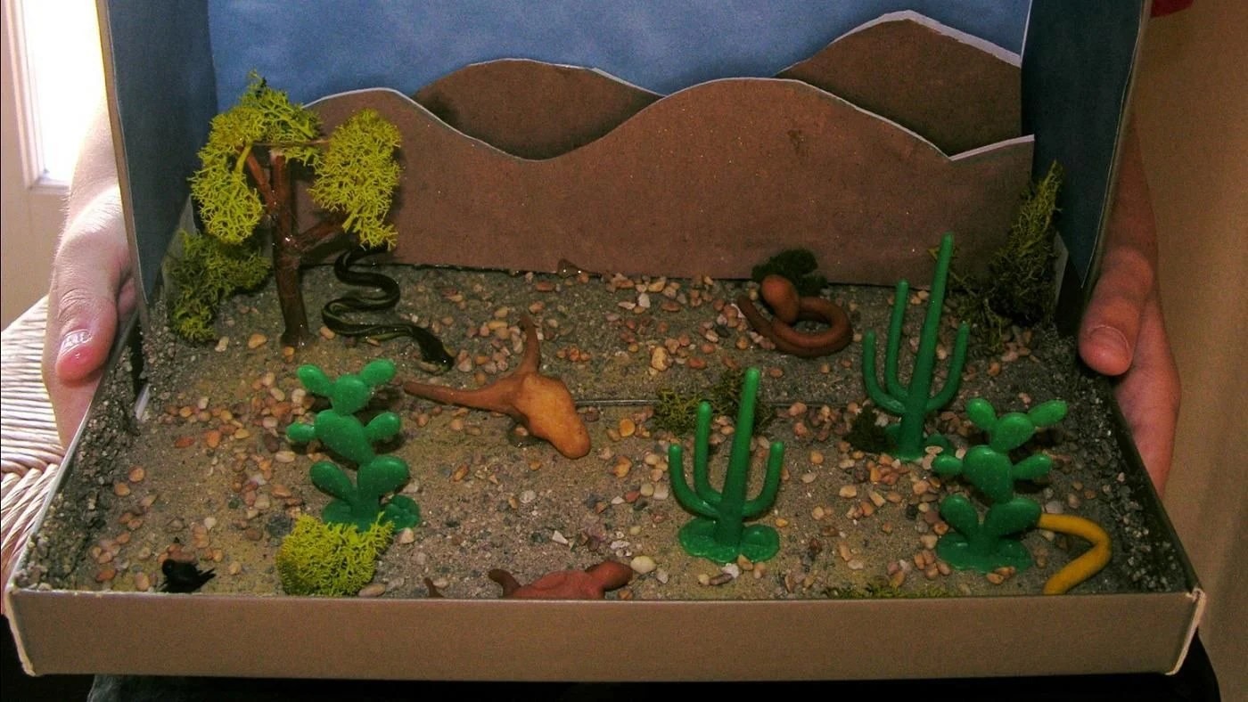 What Is A Good Desert Habitat Project For Kids