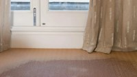 How Do You Remove the Mildew Smell From Carpet ...