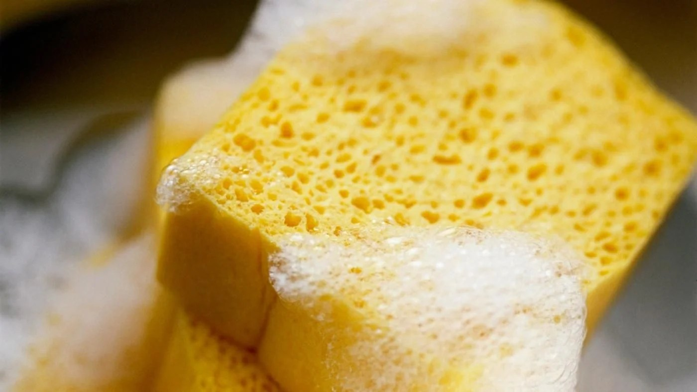 How Are Sponges Made?   Reference.com