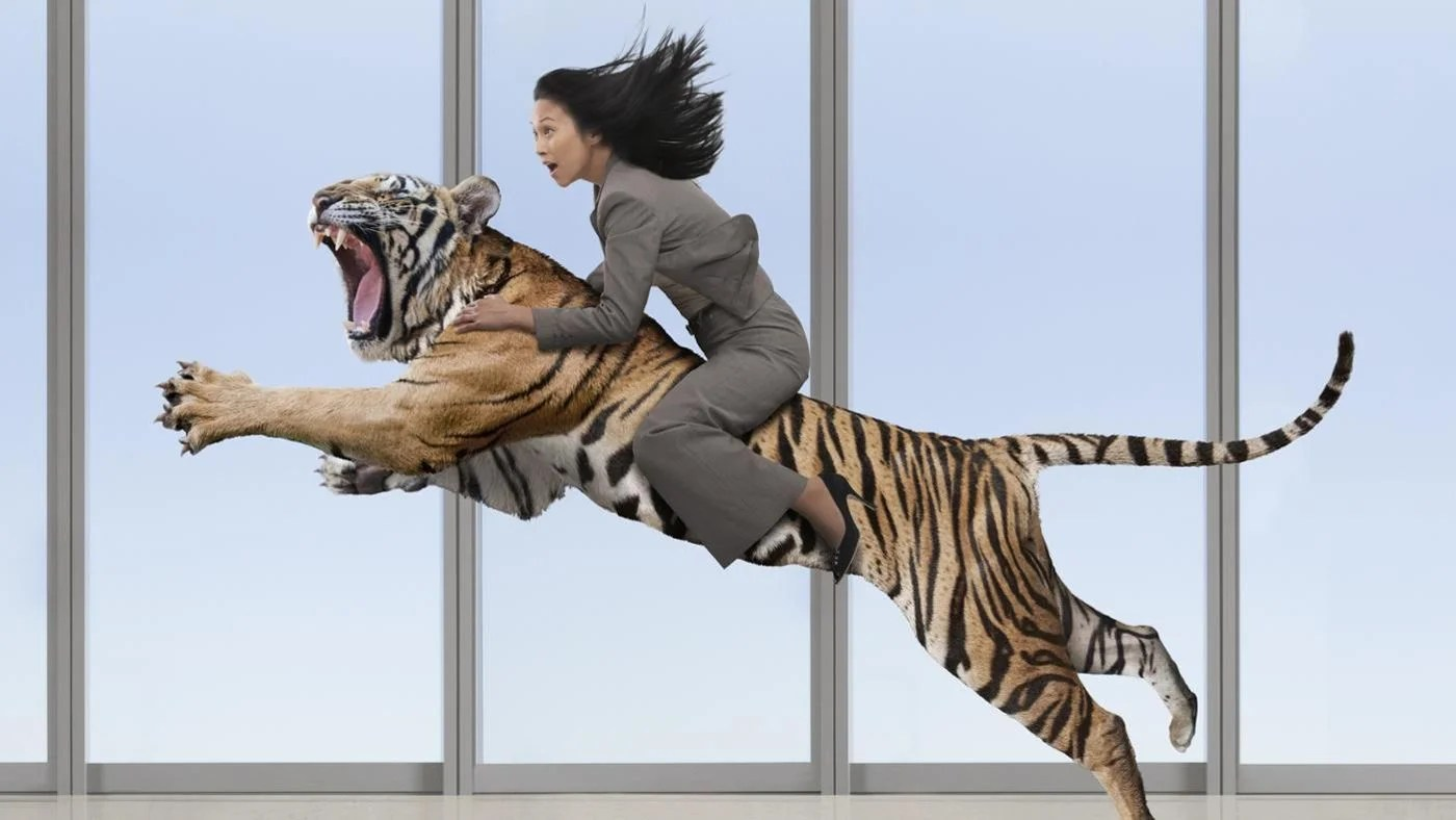 What Is A Summary Of The Lady Or The Tiger