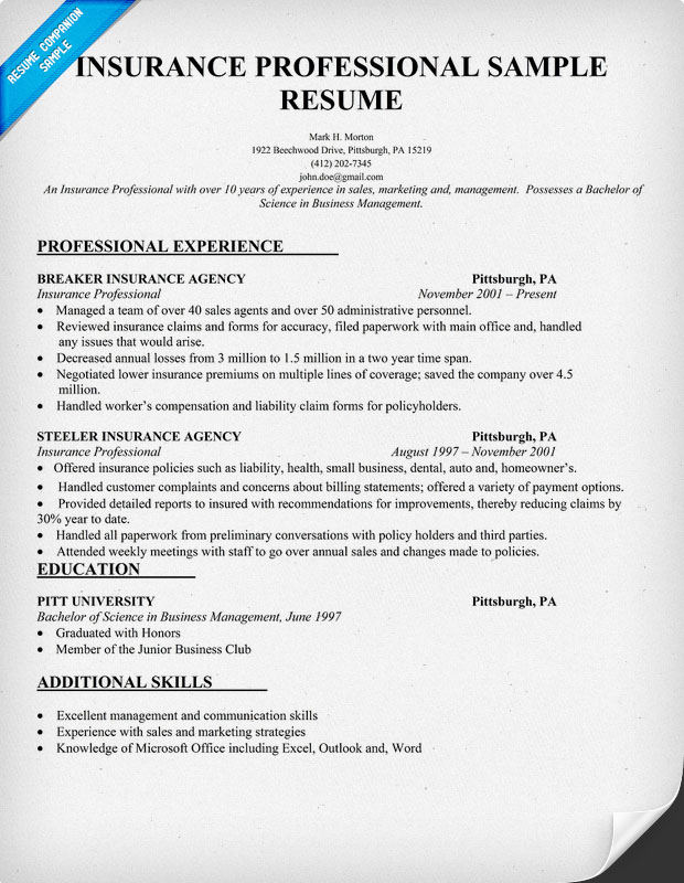 Insurance Agent Resume Insurance Sales Resume Sample Insurance