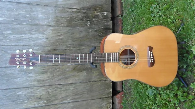 Ginkgo Wood Guitar