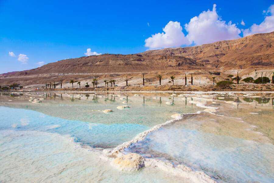 Judean Desert Safari + Dead Sea Day Trip From Tel Aviv & Jerusalem
