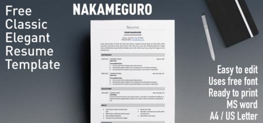Fully Editable Free Resume Templates  Rezumeet