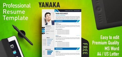 Free Modern Resume Templates | Rezumeet.com