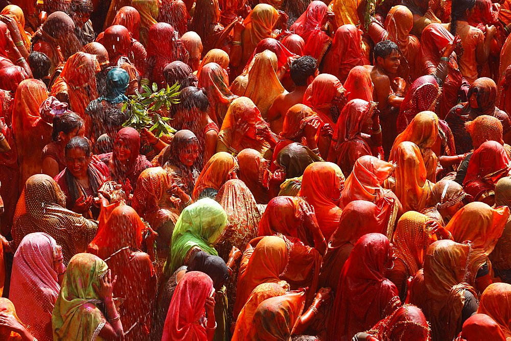 Covered in red paint at the Hali celebration, India