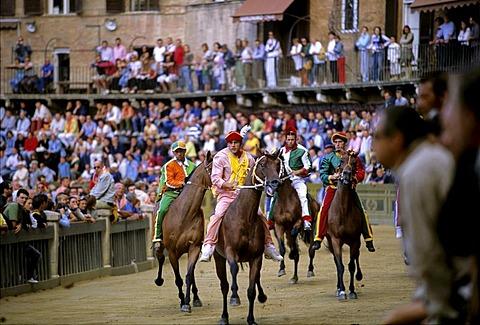 Stock photo of Palio horse race, Sienna