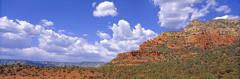 Wilderness Tucson Az Rocks