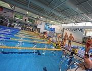 Afa e caldo un tuffo nella capitale  guida alle piscine aperte dal centro allEur  Corriere Roma