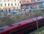Ancora un'immagine del vallo ferroviario del Pigneto ridotto a una discarica