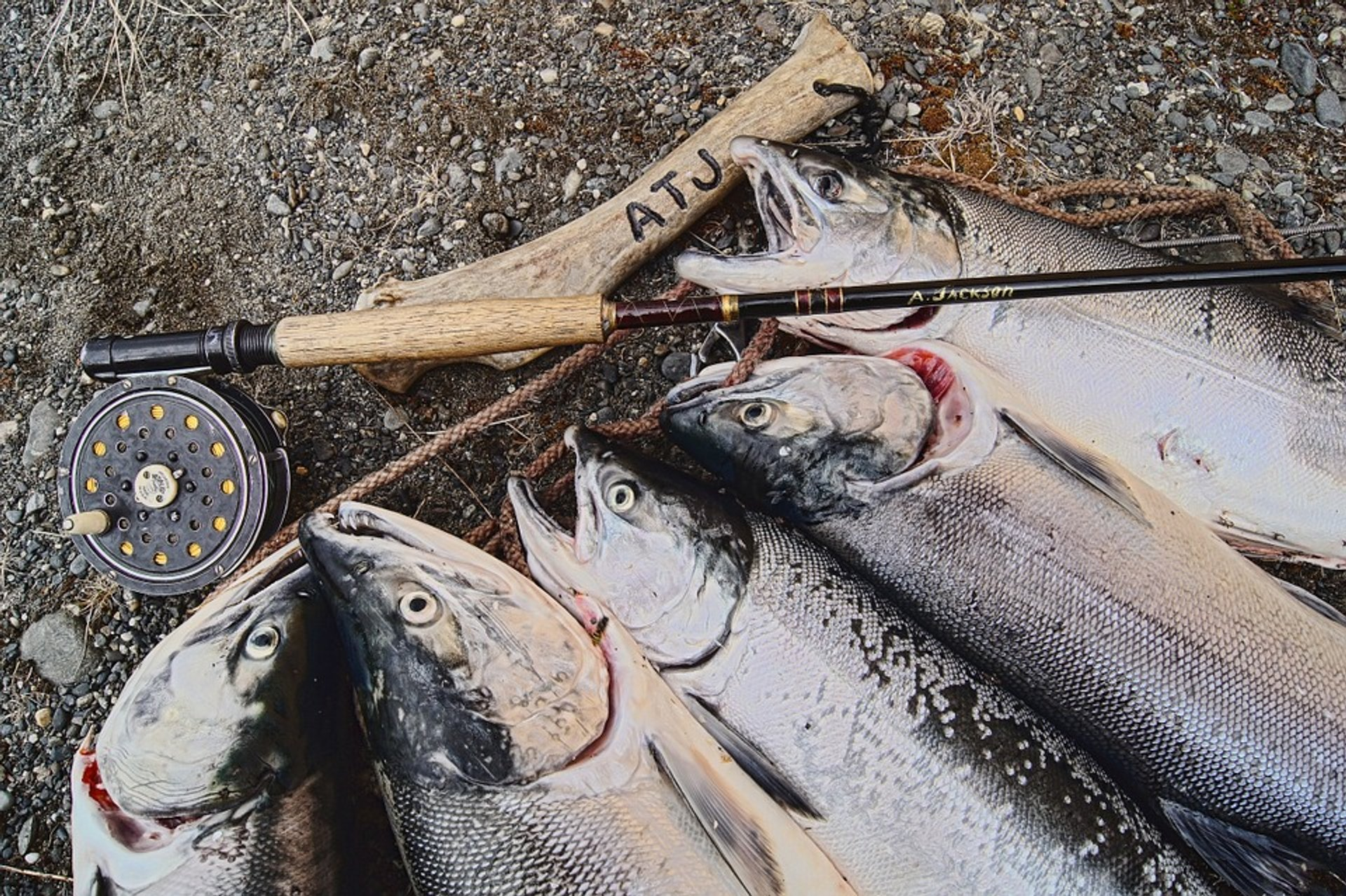 Best Time For Salmon Fishing In Alaska