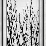 Paper Cut Artwork Tree Art Tree Branches Tree Branch Silhouette Large Tree Branches For Sale Tree Branch Wall Art Large Black And White Art Collage By Dmytro ℰ Iuliia Mann Saatchi