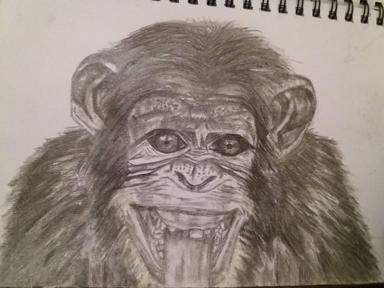 smiling chimpanzee