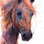 Brown Arabian Horse Painting By Slaveika Aladjova Saatchi Art