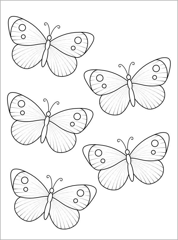 FREE 13+ Sample Bird Templates in PDF