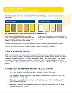 Jaundice stool color chart also sample charts templates rh sampletemplates