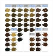 9 sample hair color charts