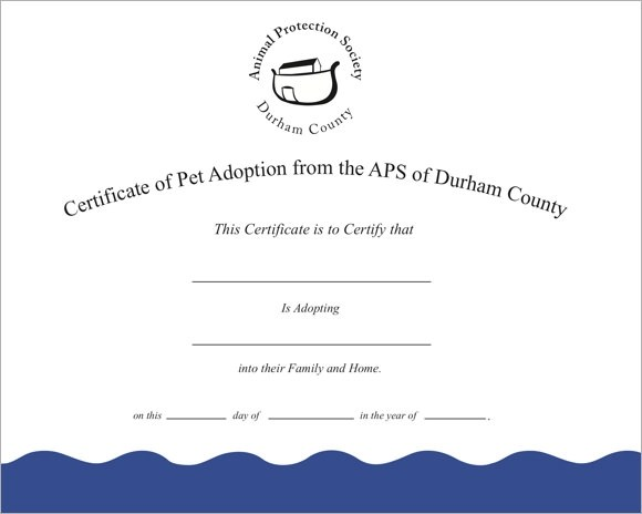 Sample Adoption Certificate Template 18 Documents In