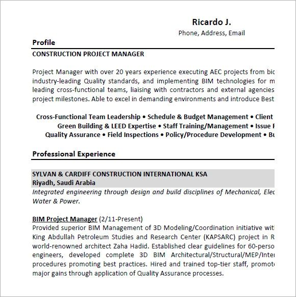 it project management resume examples and samples