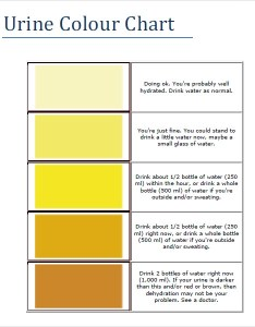 Urine color chart infection also sample charts  pdf templates rh sampletemplates