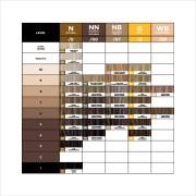 sample hair color chart templates
